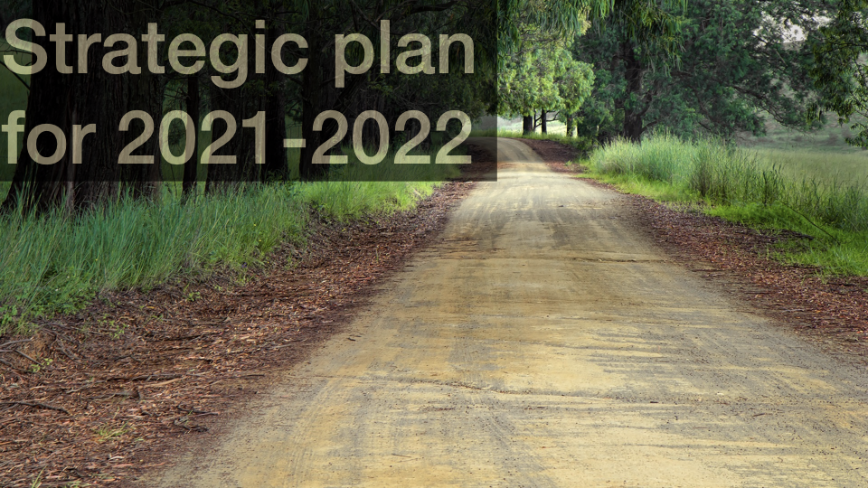 Strategic plan for 2021-2022
